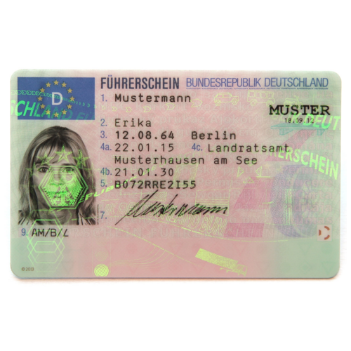 Menu: Führerscheinangelegenheiten