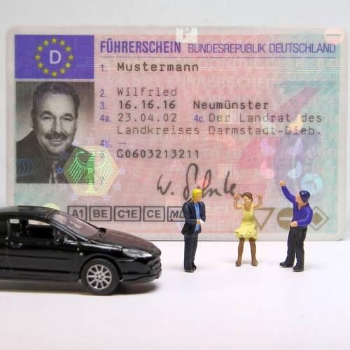 Menu: Onlineabfrage zum Bearbeitungsstand beantragter Führerscheine